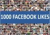 provide 1000 Real Facebook Likes
